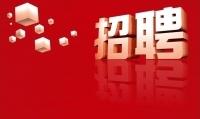 2019年2月17日吉祥围企业招聘会