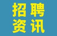 共招43人!广州市南沙区第二次组织员招聘